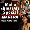 Download Maha Shivaratri Special Mantra Mp3