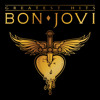 Born To Be My Baby (Album Version)