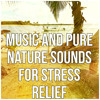 Music and Pure Nature Sounds for Stress Relief