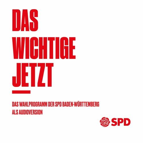 Wahlprogramm zur Landtagswahl 2021