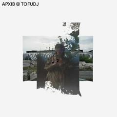 APXIB ⑧ TOFUDJ