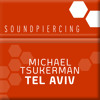 Michael Tsukerman - Tel Aviv (Immoral Monkeys Vs DJ Shultz Remix)