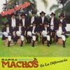 Banda Machos - Chaparra de mi amor