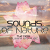 The Most Relaxing Spa Music - Sounds of Nature, New Age Music, Spa Music, Meditation, Sleep Music, Spa Dreams, Solo Piano New Age