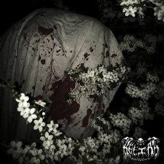Mistress autopsy. W/ Winter Ghost (Prod.Heavylungs)