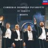 Puccini: Nessun dorma (None shall sleep) [Turandot]