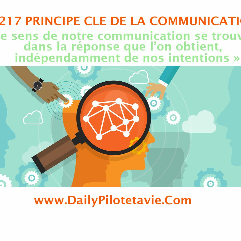 #217 PRINCIPE CLE - Le sens de notre communication se trouve dans la réponse que l'on obtient