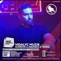 Vidalyc Muzik sesiòn 6 para Gorrion LLamando a Tierra