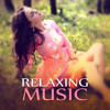 Relaxation Trip (Musical Pieces to Serenity)
