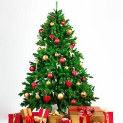 a freddy tincan christmas mix