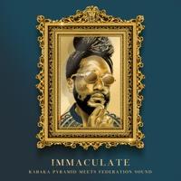 """Immaculate"" Mixtape - Kabaka Pyramid x Federation Sound"