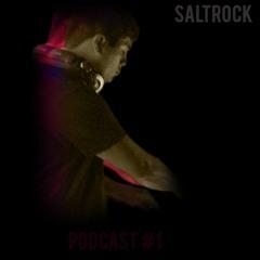 Saltrock Podcast #1