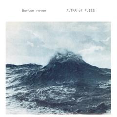 Altar of Flies - Under Vår Livstid (iDEAL191 LP)