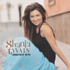 Don't Be Stupid (You Know I Love You) (Country Album Version)