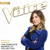 Fallingwater (The Voice Performance)