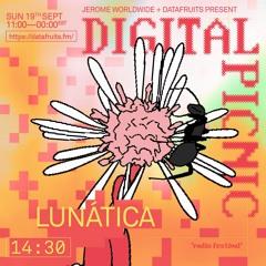 JEROME WORLDWIDE DIGITAL PICNIC - LUNATICA