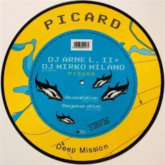 DJ Arne L. II & Mirko Milano - Assimilation