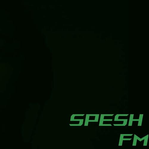 Spesh FM - Mr Backseat