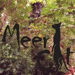 Meercat - As 5 Maravilhas Do PROG
