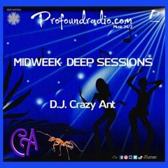 Profoundradio Mix #134 Deep House