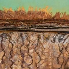 Like the Banks of a River: Deborah Foutch's Fiber & Mixed Media Art
