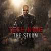 What If It Was Me (feat. Krizz Kaliko)