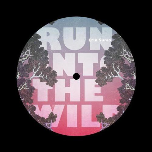 Erik Sumo - Run Into The Wild (E. Live remix)