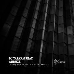 DJ Tarkan - Lovely ft. Anduze (DJ Junior CNYTFK Remix)