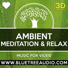 Meditation In Nature - Royalty Free Background Music for YouTube Videos Vlog | Relax Yoga Calm Chill