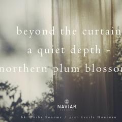 Northern Plum Blossoms(naviarhaiku381)
