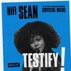 Testify (feat. Crystal Waters) (Radio Edit)