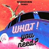 Don Toliver - What You Need (Nizhoven Remix)