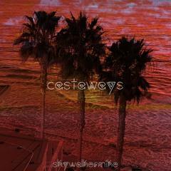 Castaways - Skywalker Mike (Backyardigans Flip)
