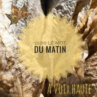 23- LE MOT DU MATIN - Cioran - Yannick Debain