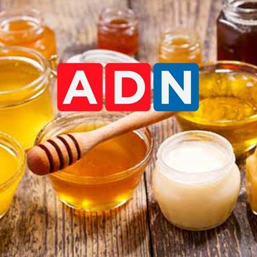 Entrevista Radio ADN - ADN Noticias - Miel: un alimento saludable en pandemia