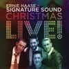 Every Light That Shines at Christmas (Live)
