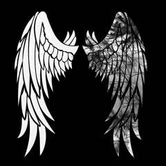 Broken Wings -