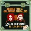 Paloma (Andres Calamaro- 2 son multitud)