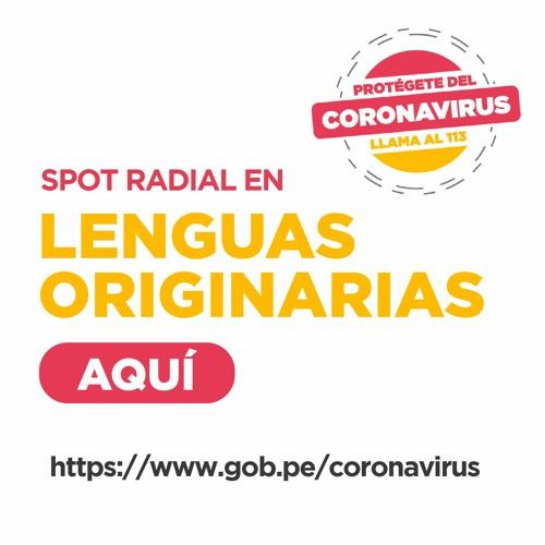 Coronavirus: spots en lenguas indígenas