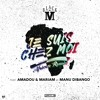 Je suis chez moi (African remix) [Bonus track] [feat. Amadou & Mariam & Manu Dibango]