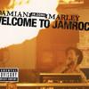 Welcome To Jamrock (Explicit)