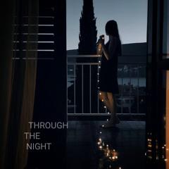 through.the.night