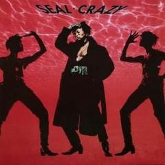 Seal - Crazy (Acapella Mix)