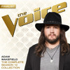Can't You See (The Voice Performance)