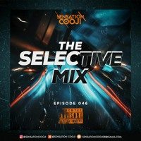 THE SELECTIVE MIX 046