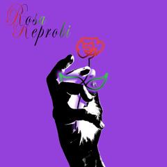 Rosa Reprobi