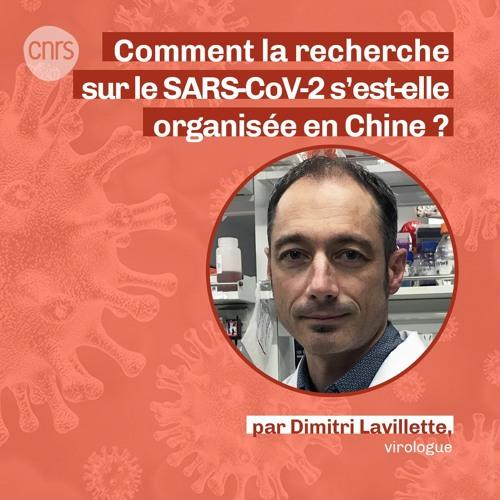 Comment s'est organisée la recherche sur le SARS-CoV-2 en Chine ? par Dimitri Lavillette
