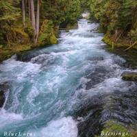 When Water Sings