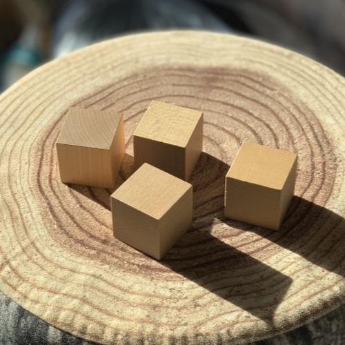 きになるオブジェ (The Curious Object/ The Obgect Becomes Wood)