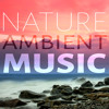 Nature Ambient Music – Water, Ocean Waves, Rain, Calmness, Spa, Massage, Meditation Relaxation, Serenity Music, Soothe Sounds